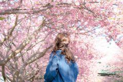 さくら、卒業、新生活…。邦楽ロックバンドの春ソング特集